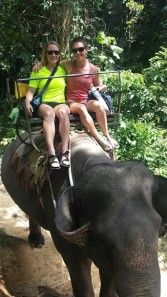 Elephant trek in Thailand